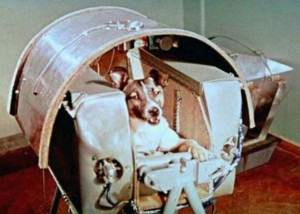 Laika, az első űrutazó kutya