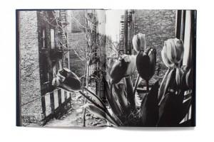 best-photobooks-of-2014-331