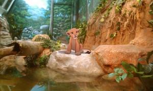 Szimba, az állatkert lakója