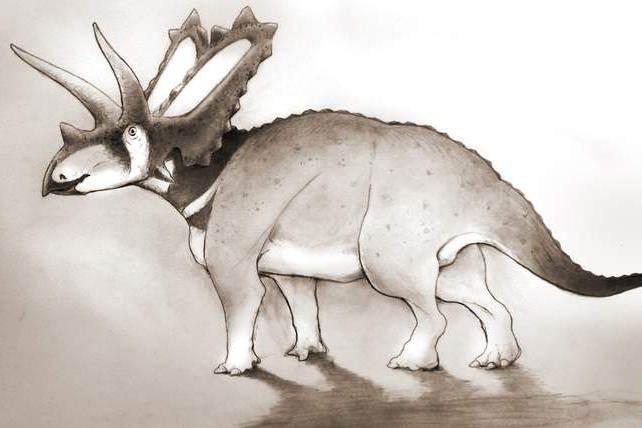 pentaceratops_aquilonius_77897c46288295d0a290c5f4dd653dd5.nbcnews-ux-720-480