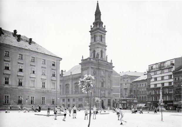 szervita-ter 5