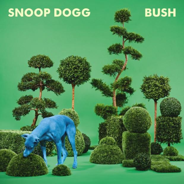 snoop_dogg_b_bush_cdcov