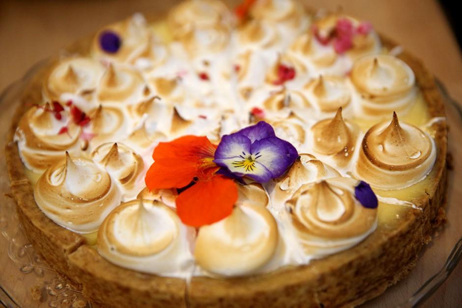 Wild Flower Bar virag viragbolt uzlet vadviragok viragkoto 2015.11.20 foto-horvath peter gyula