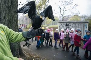 A városligeti madárbarát kert és tanösvény megnyitója 2016.11.11. Fotó: Hováth Péter Gyula
