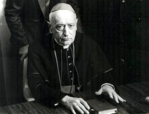 Visszapillantó tükör – 125 éve született Mindszenty József